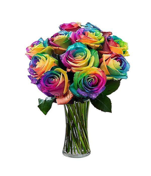 Μπουκέτο με 10 Rainbow Τριαντάφυλλα