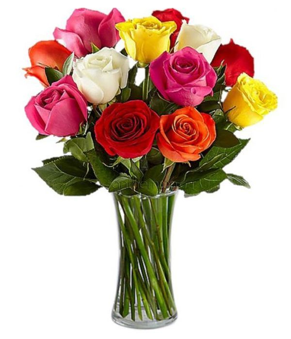 Colourful bouquet of 12 roses
