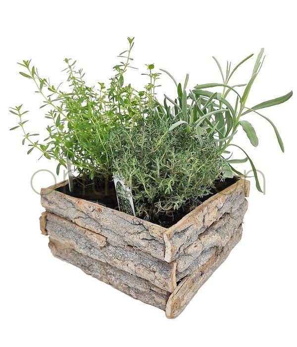 Ξύλινη βάση με αρωματικά φυτά