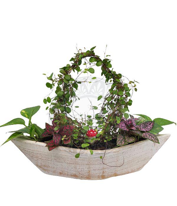 Ξύλινη γόνδολα με φυτά