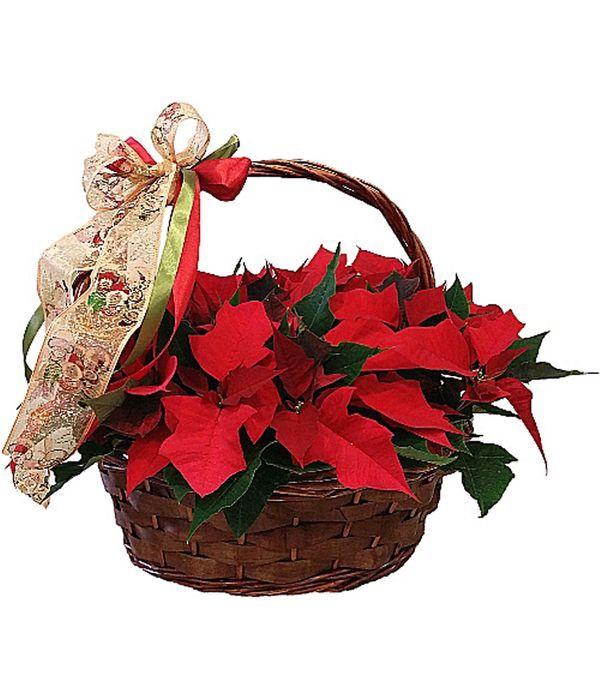 Παραδοσιακά Χριστούγεννα