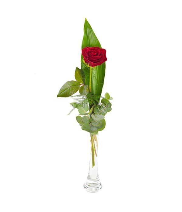 The Classic Rose.  Vase is included