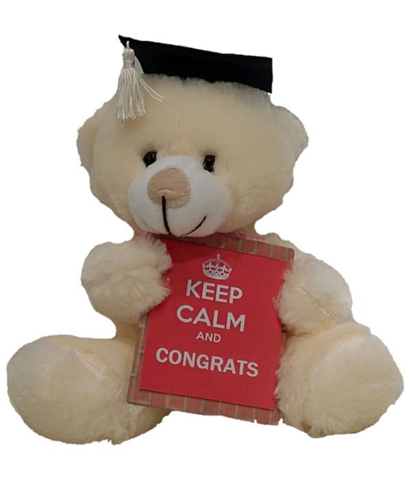 Congratulation teddy bear 30cm