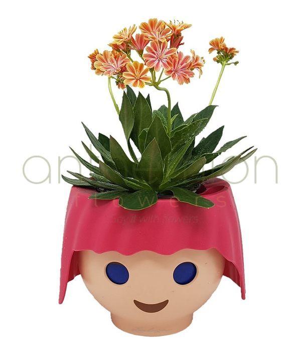 Αυτοποτιζόμενο δοχείο playmobil με φυτό