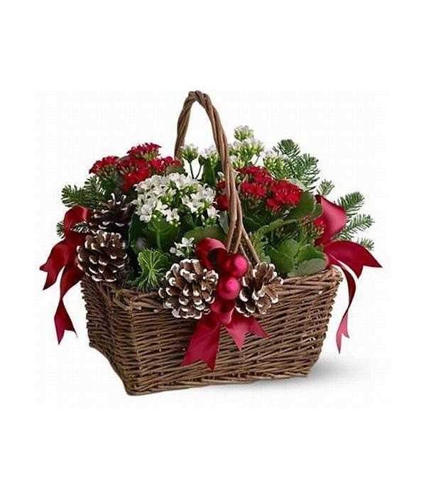 Charming Basket of Christmas plants
