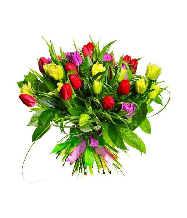 Tulips per stem