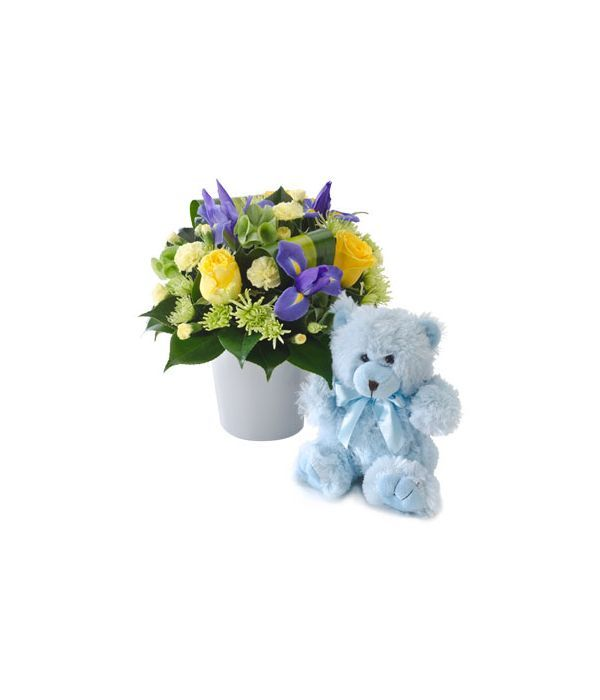 Flowers and teddy bear for baby boy