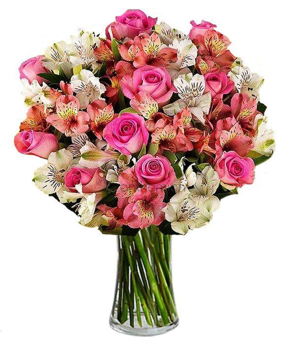Τριαντάφυλλα με αλστρομέριες