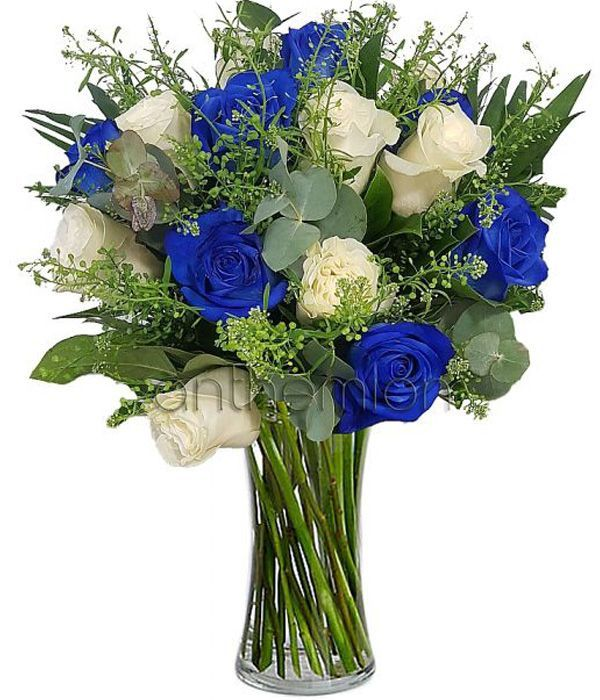Dioni with white and blue roses