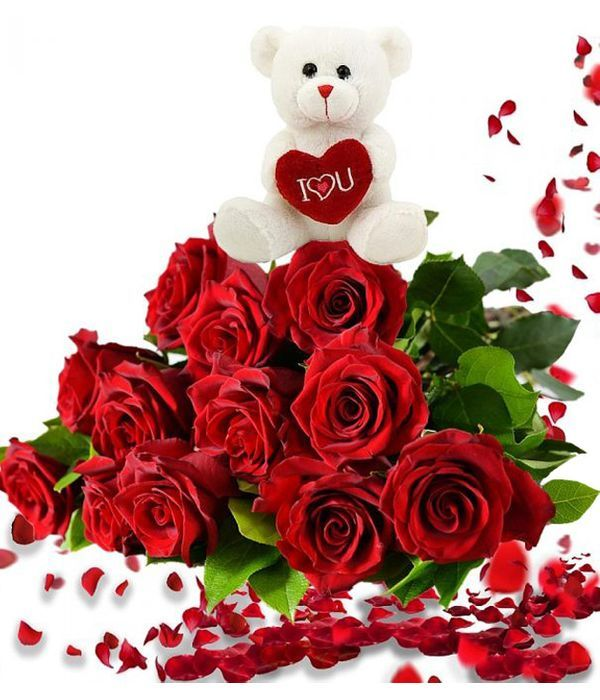 Bouquet of 12 red roses and teddy bear