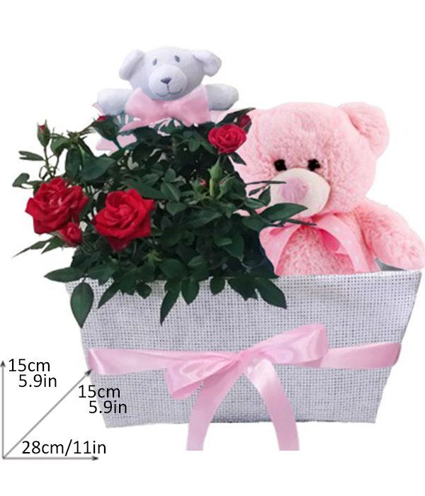 Basket with red mini rosebush and teddy bear for girl