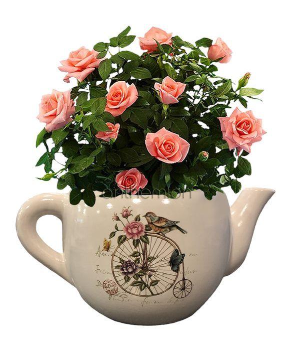 Κεραμική τσαγιέρα με ροζ τριανταφυλλιά