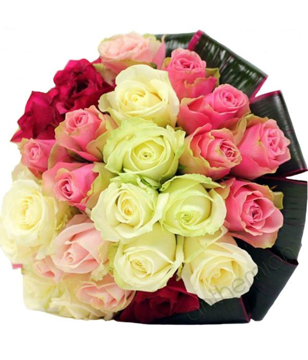 Bouquet of 24 colorful roses