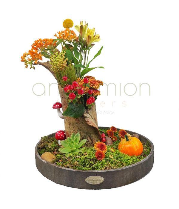 Φθινοπωρινός κήπος σε δίσκο