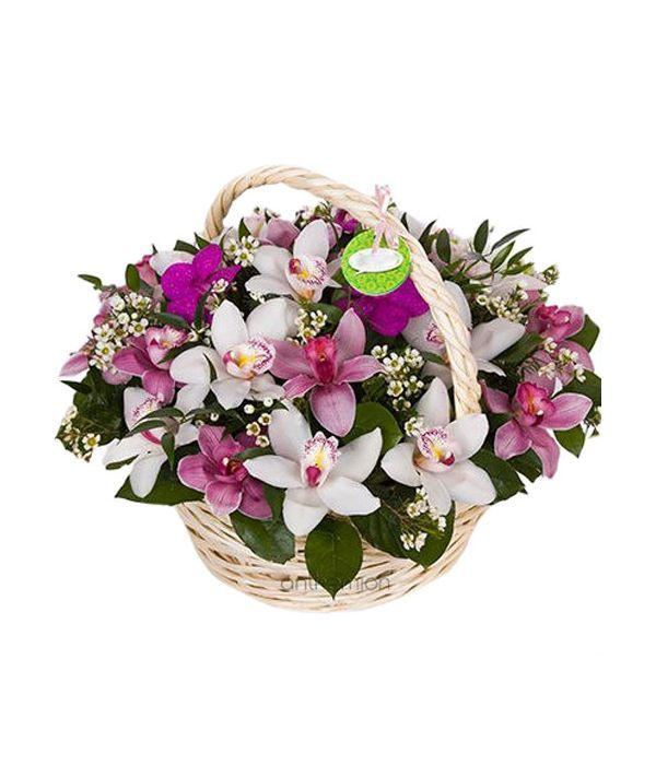 Basket full of Orchids