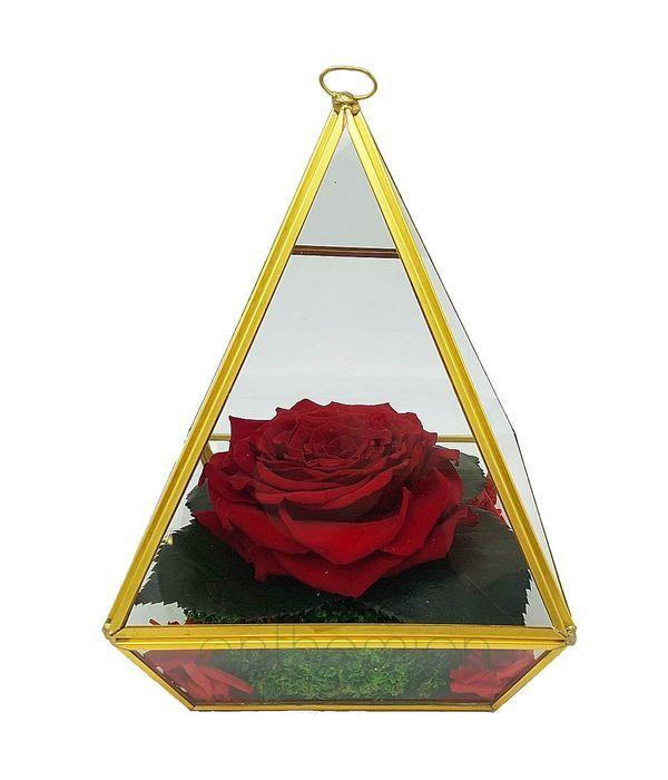 Παντοτινό τριαντάφυλλο σε βάση πυραμίδα (XL μέγεθος)