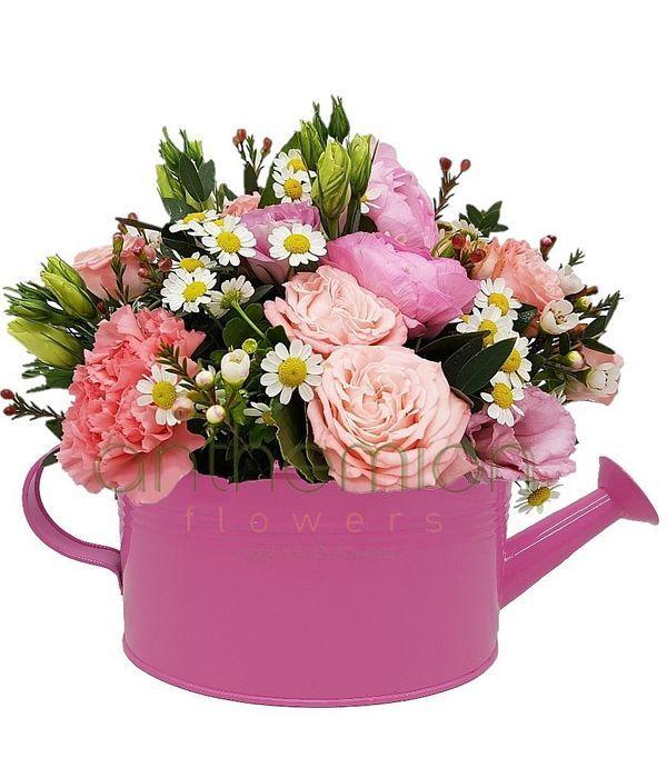 Ροζ οβάλ ποτιστήρι