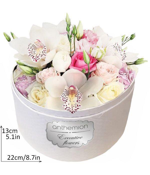 Εξωτική ομορφιά σε λευκό κουτί