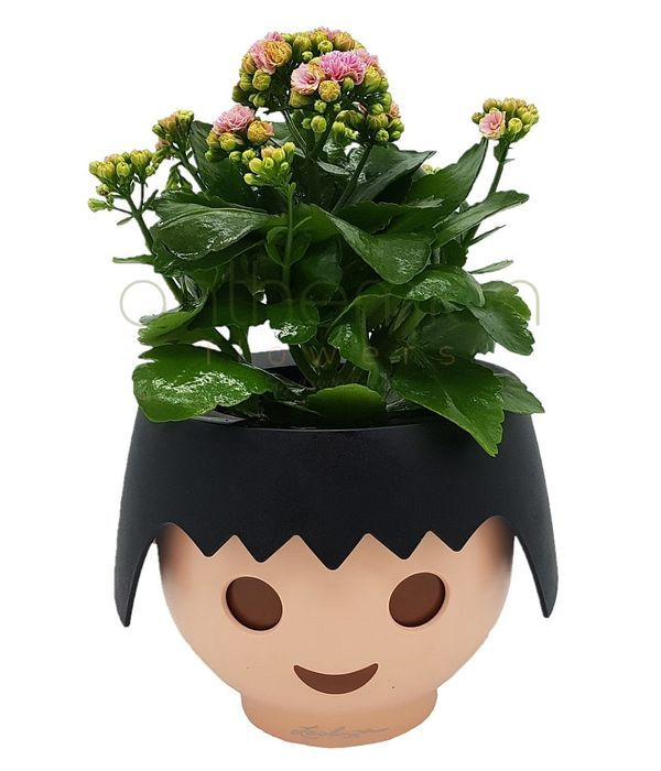 Plant in playmobil self watering pot