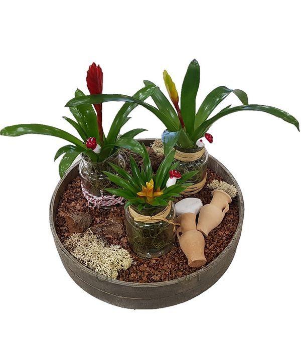 Ξύλινος δίσκος με φυτά σε γυάλινα κασπώ