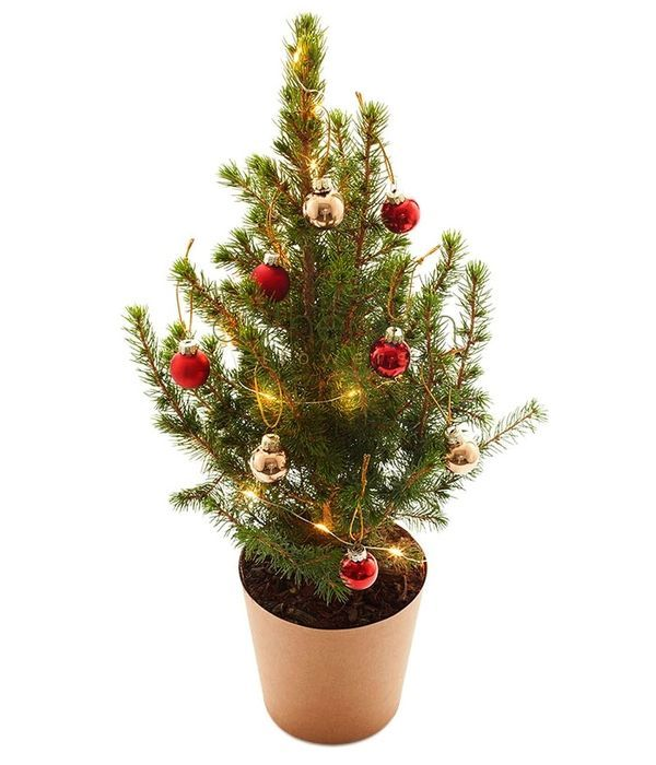 Χριστουγεννιάτικο δεντράκι με στολίδια