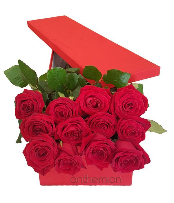 Red flower box with 12 red roses