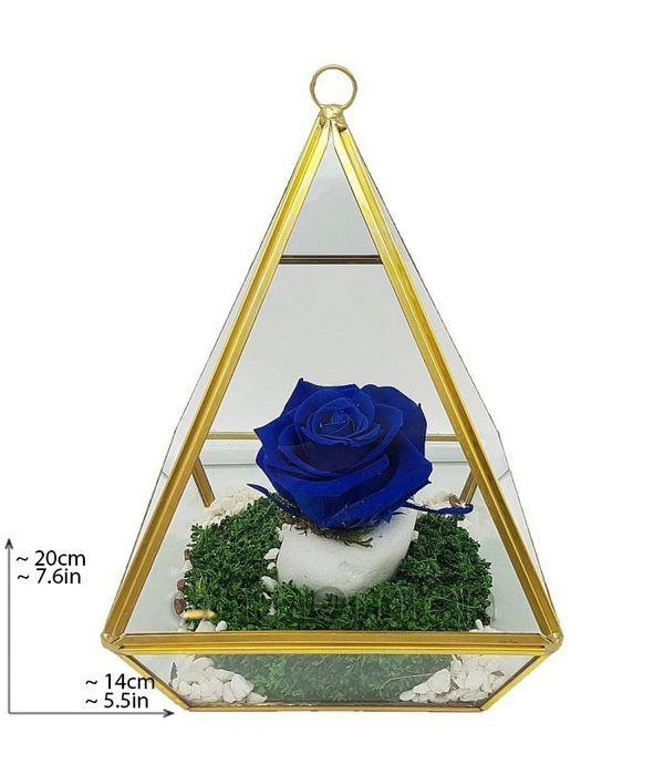 Blue forever rose in pyramid (XL size)