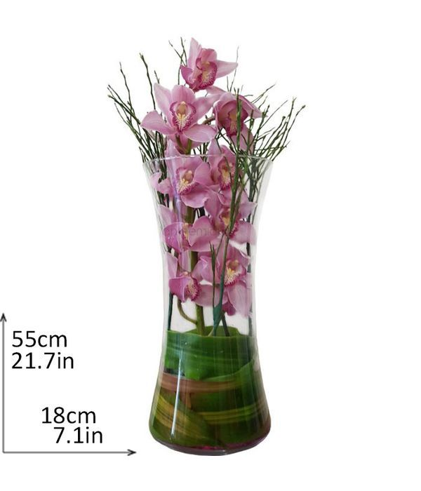 Cymbidium pink orchid in a glass vase