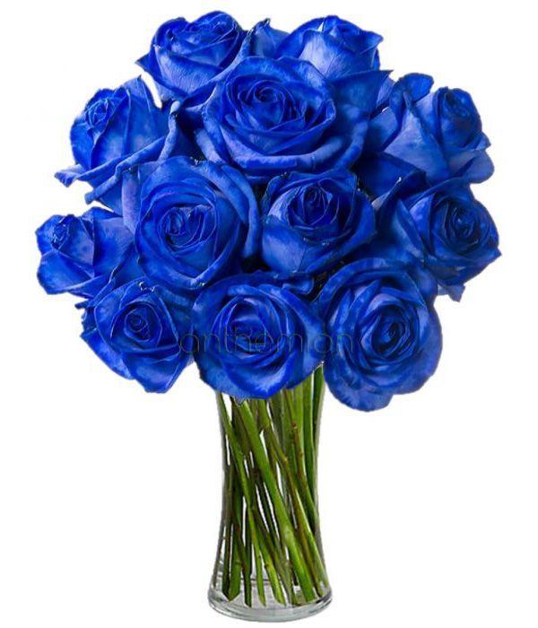 Εντυπωσιακά μπλε τριαντάφυλλα σε μπουκέτο