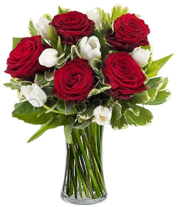 Special offer | Roses and tulips