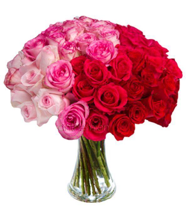 Μπουκέτο με 48 πανέμορφα τριαντάφυλλα