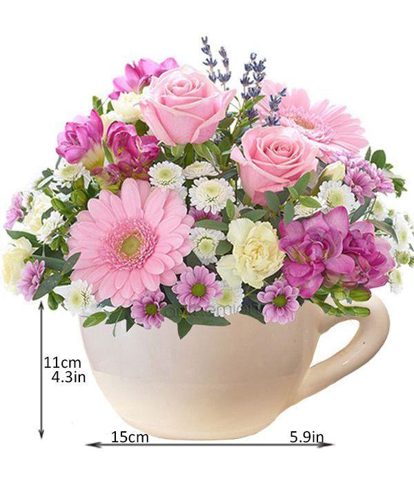 Ροζ Ομορφιά σε φλιτζάνα