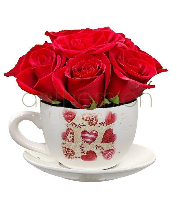 Τριαντάφυλλα κόκκινα σε φλιτζάνι με πιατάκι