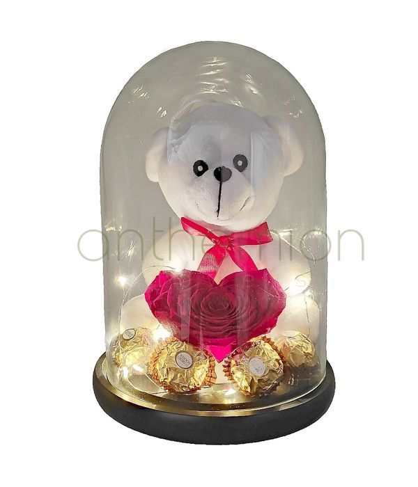 Teddy bear with forever rose heart, chocolates and lights