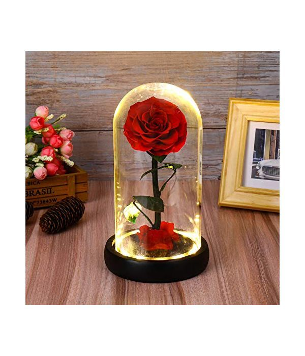 Παντοτινό τριαντάφυλλο με LED φωτάκια (Μεσαίο μέγεθος)