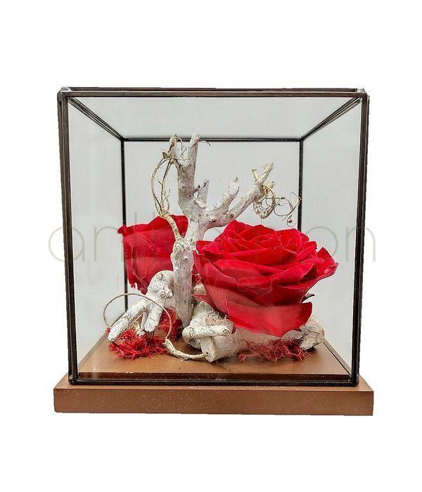 Forever roses σε σύνθεση με ξύλο και γυαλί