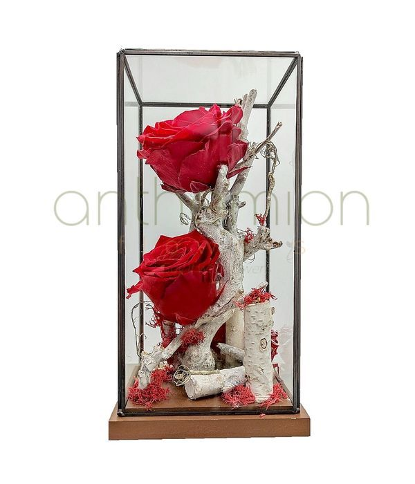 Forever roses σε ψηλή γυάλινη σύνθεση