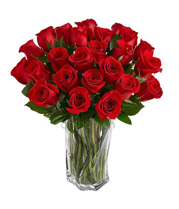 Red Bouquet of 24 roses. Vase is not included