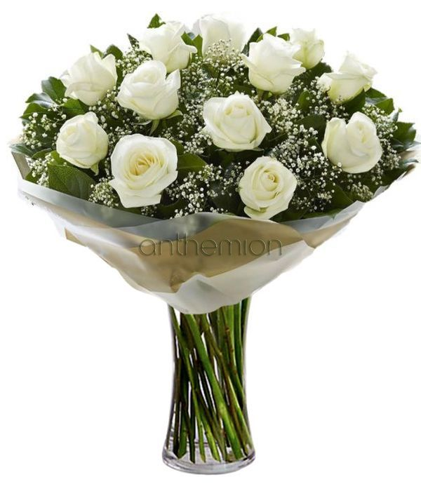 Pure love of white roses