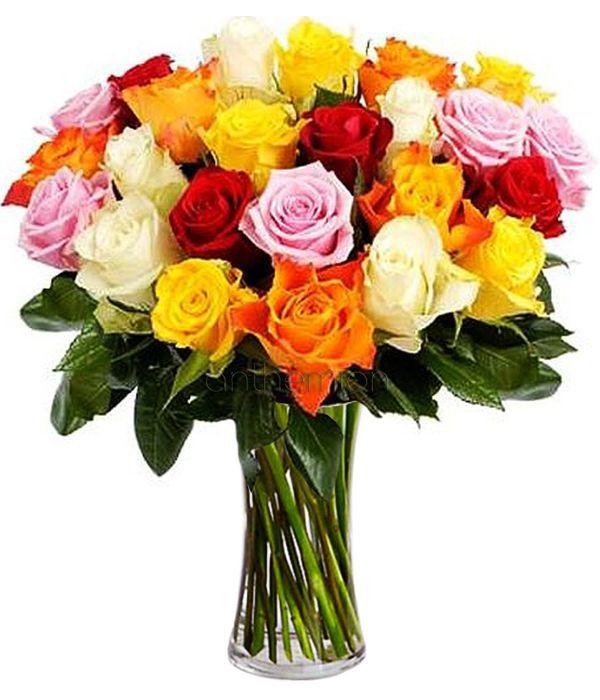 Έκρηξη Χρωμάτων με 24 τριαντάφυλλα. Διατίθεται χωρίς το βάζο