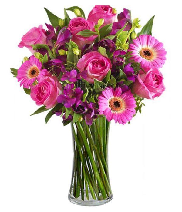 Fuchsia floral beauty