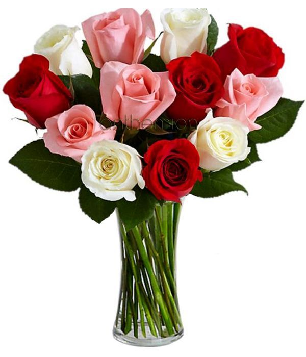 Roses for Her...