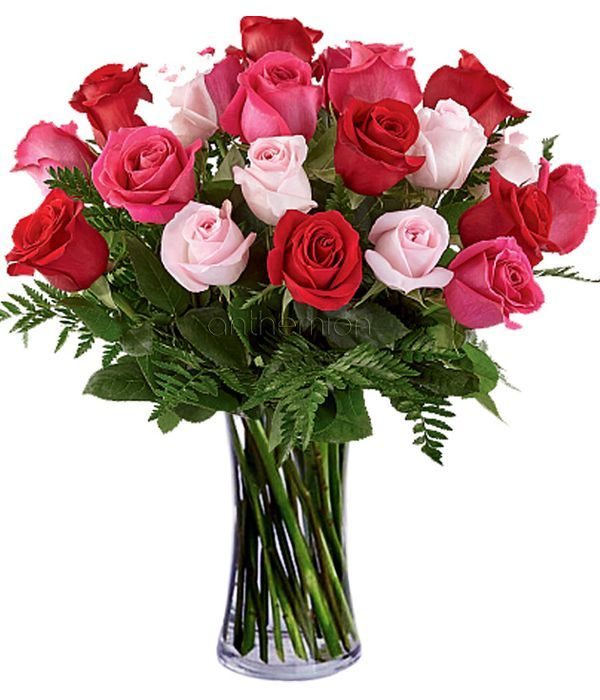 Τα τριαντάφυλλα της αγάπης