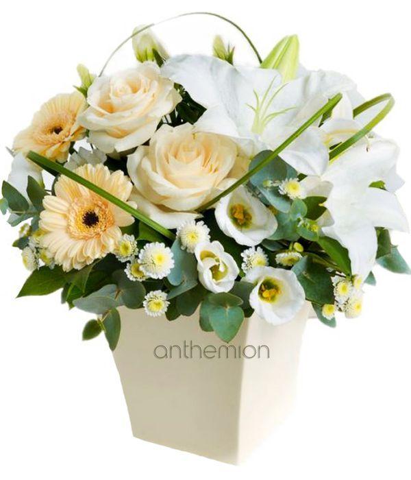White and cream arrangement