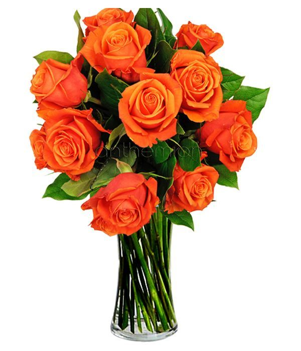 Vibrant Orange Roses Bouquet. VASE IS NOT INCLUDED