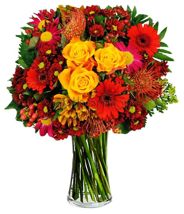 Colorful Bold Beauty. VASE IS NOT INCLUDED