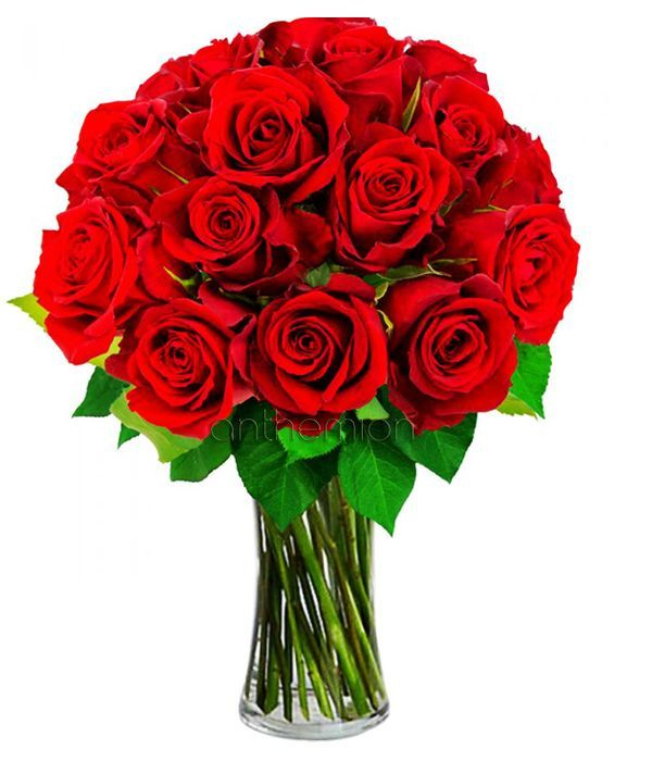 Bouquet with 15 roses