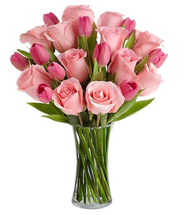 Pink roses with pink tulips