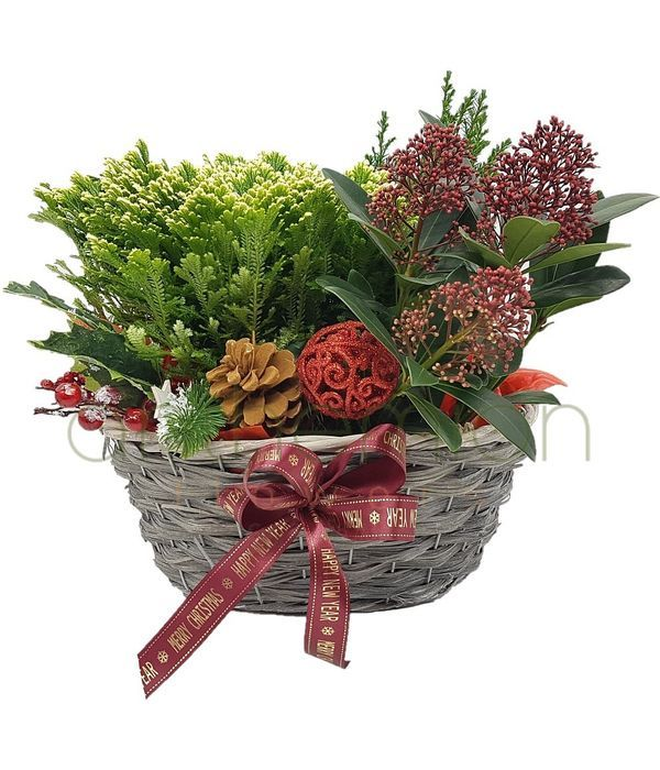 Happy Christmas plant basket
