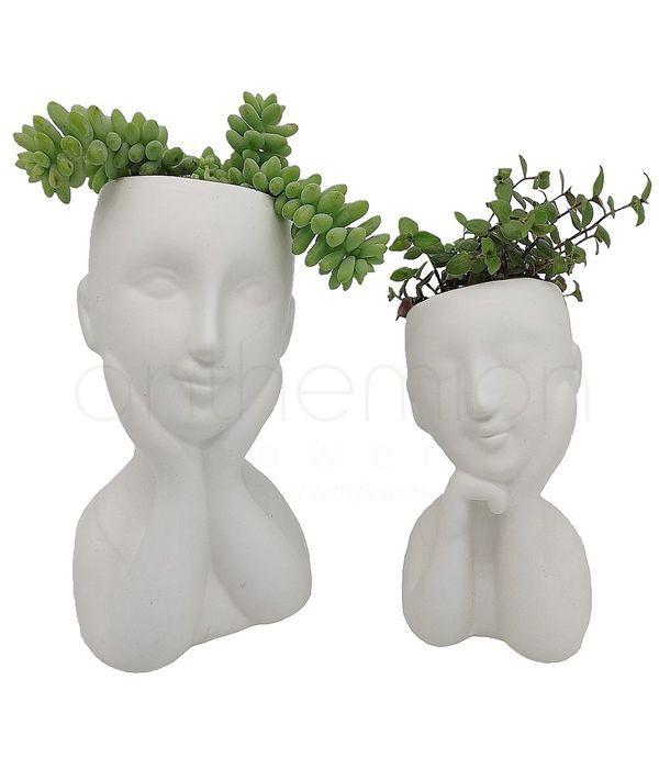 Διακοσμητικά παχύφυτα σε κεραμικά κεφάλια
